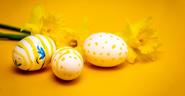 Veselé Velikonoce a užívejte si jaro!